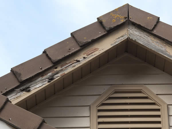 Home fascia with wood damage